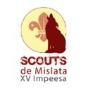 Scouts Mislata